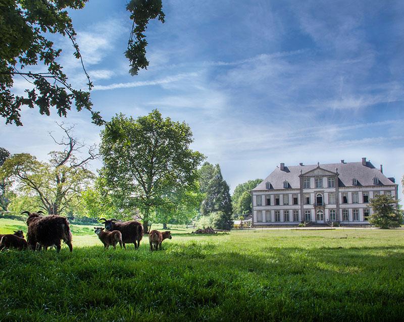 Visit Wallonie-Picardië - Fotoreportages Château d'Attre
